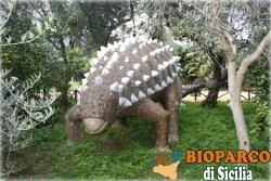 Bioparco di Sicilia - ankilosaurus