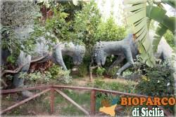 Bioparco di Sicilia - pachycephalosaurus