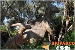 Bioparco di Sicilia - parasaurolophus