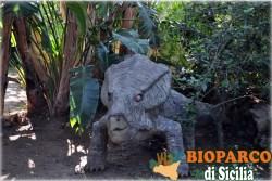 Bioparco di Sicilia - protoceratops
