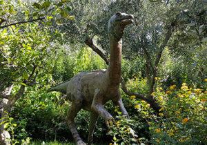 Bioparco di Sicilia - Struthiomimus