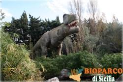 Bioparco di Sicilia - tyrannosaurus rex